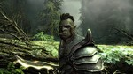 The-elder-scrolls-5-skyrim-1313181632949844