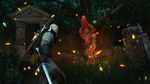 The-witcher-3-wild-hunt-1462949336280531