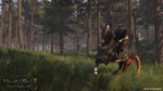 Mount-and-blade-2-bannerlord-1484750156208181