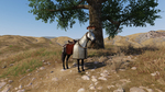 Mount-and-blade-2-bannerlord-1507981253331863